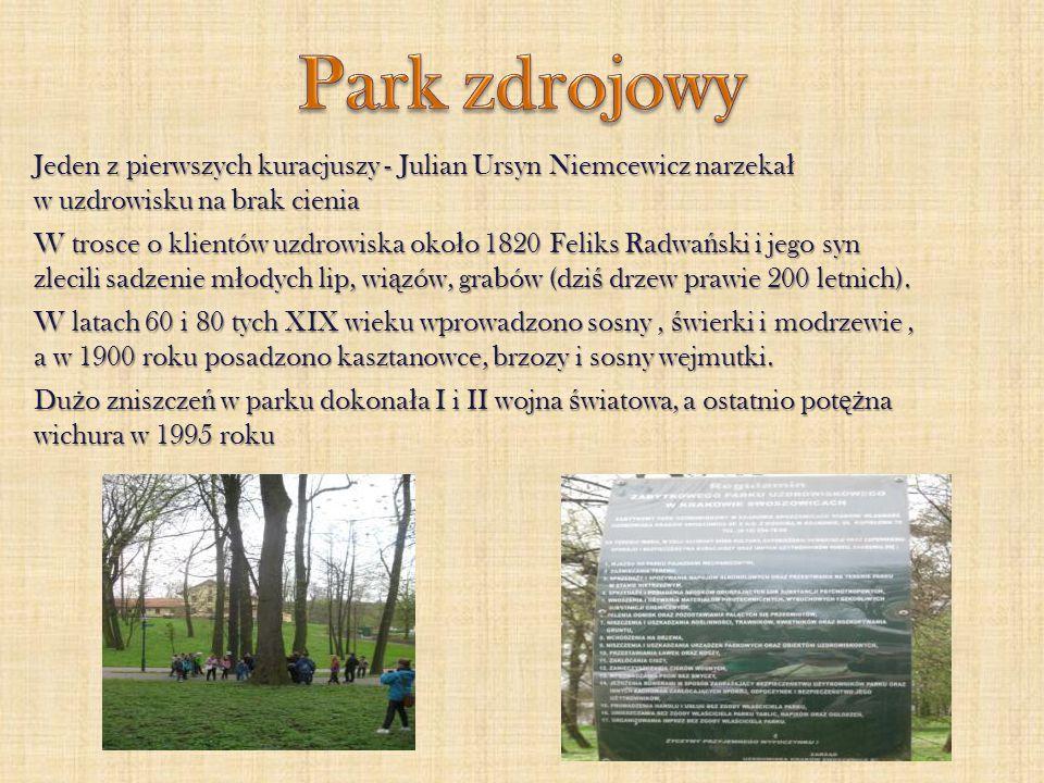 Jeden z pierwszych kuracjuszy - Julian Ursyn Niemcewicz narzeka ł w uzdrowisku na brak cienia W trosce o klientów uzdrowiska oko ł o 1820 Feliks Radwa