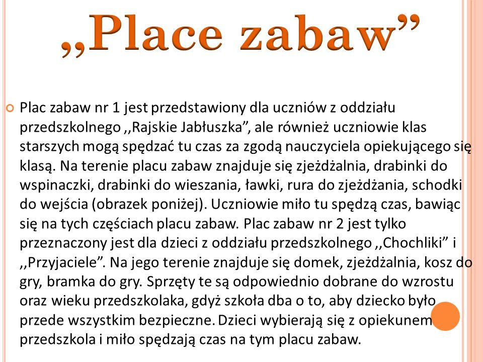 Plac zabaw nr 1 jest przedstawiony dla uczniów z oddziału przedszkolnego,,Rajskie Jabłuszka , ale również uczniowie klas starszych mogą spędzać tu czas za zgodą nauczyciela opiekującego się klasą.
