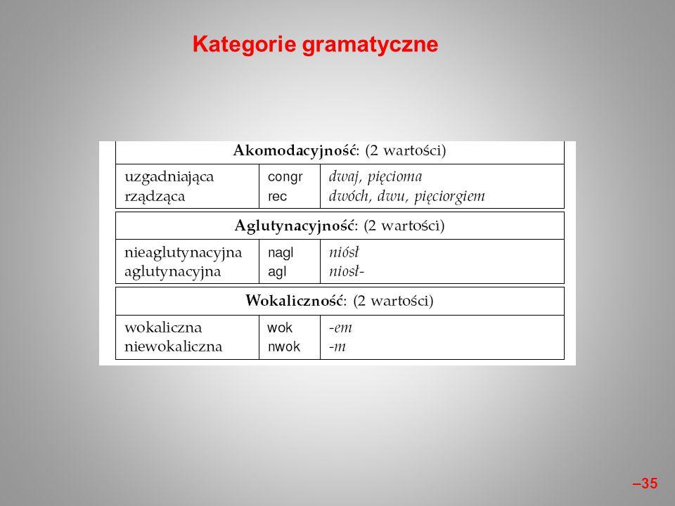 Kategorie gramatyczne –35