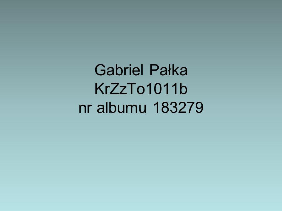 Gabriel Pałka KrZzTo1011b nr albumu 183279