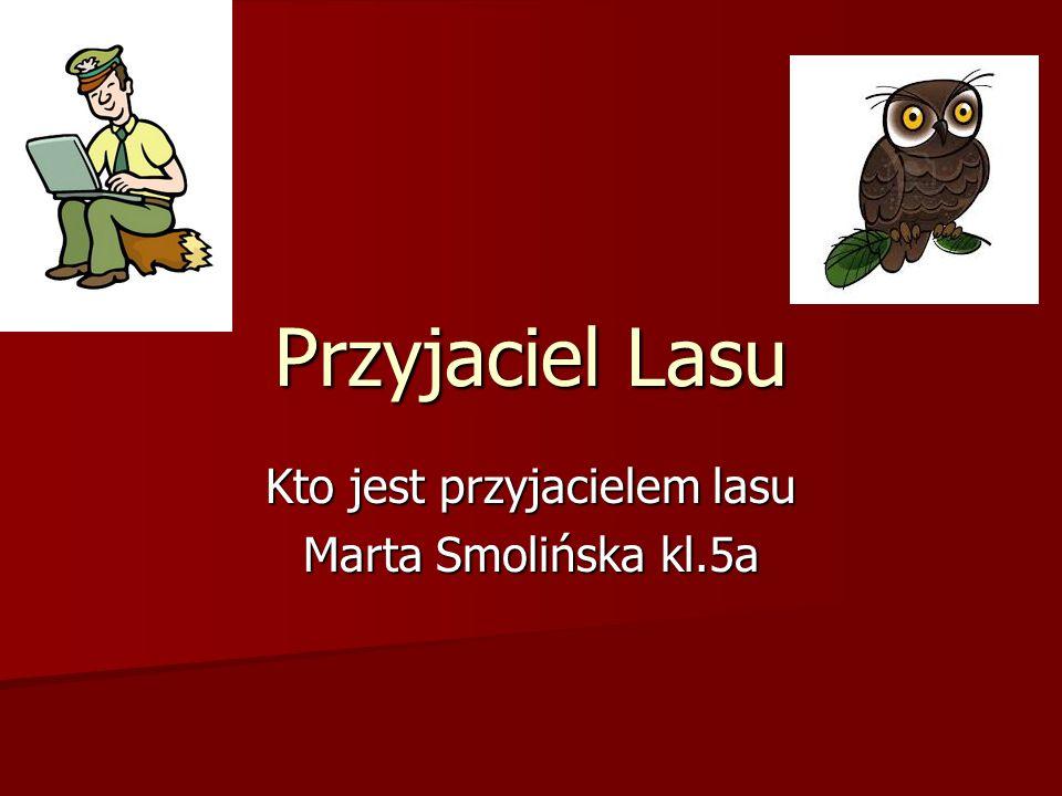 Przyjaciel Lasu Kto jest przyjacielem lasu Marta Smolińska kl.5a