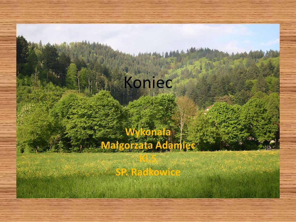 Koniec Wykonała Małgorzata Adamiec Kl.5 SP. Radkowice
