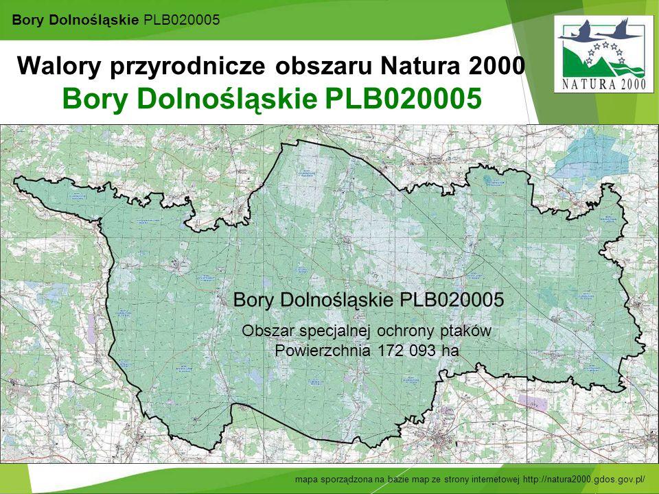 20 Bory Dolnośląskie PLB020005 mapa sporządzona na bazie map ze strony internetowej http://natura2000.gdos.gov.pl/ Walory przyrodnicze obszaru Natura