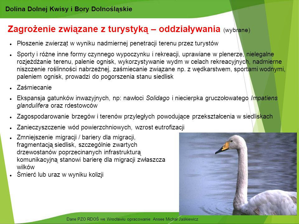 24 Dolina Dolnej Kwisy i Bory Dolnośląskie Zagrożenie związane z turystyką – oddziaływania (wybrane) Płoszenie zwierząt w wyniku nadmiernej penetracji