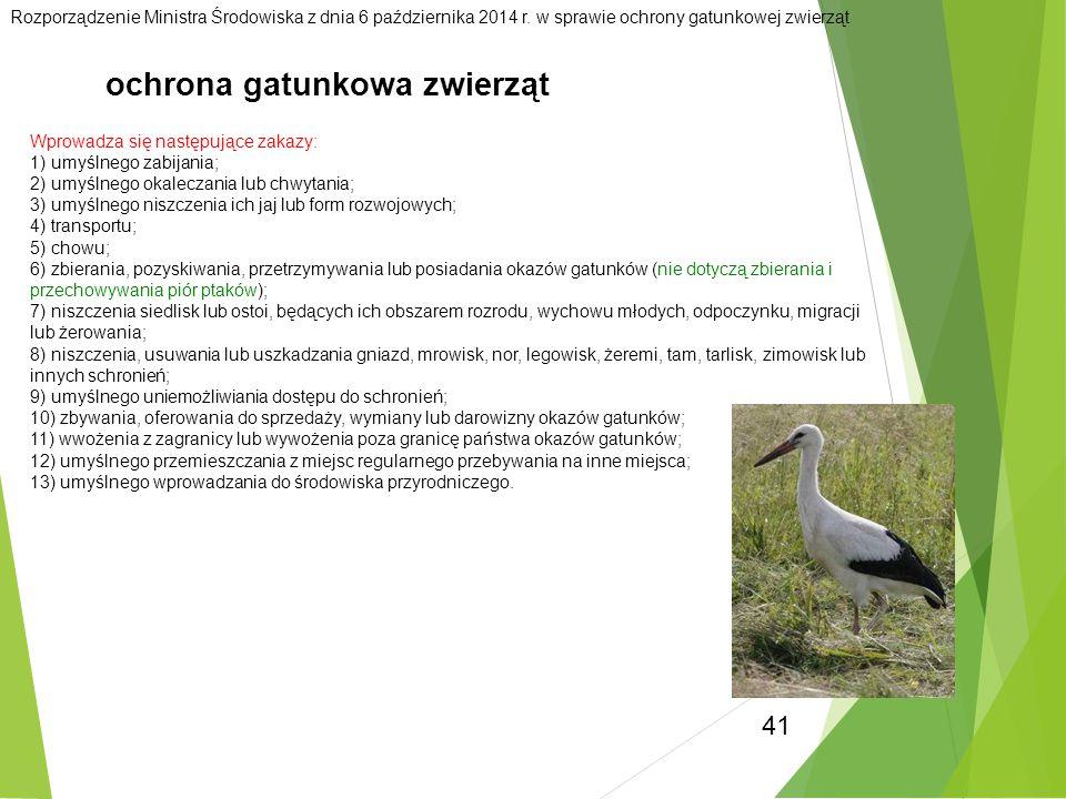 41 ochrona gatunkowa zwierząt Rozporządzenie Ministra Środowiska z dnia 6 października 2014 r. w sprawie ochrony gatunkowej zwierząt Wprowadza się nas