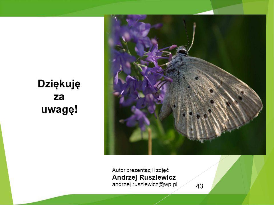 43 Dziękuję za uwagę! Autor prezentacji i zdjęć Andrzej Ruszlewicz andrzej.ruszlewicz@wp.pl