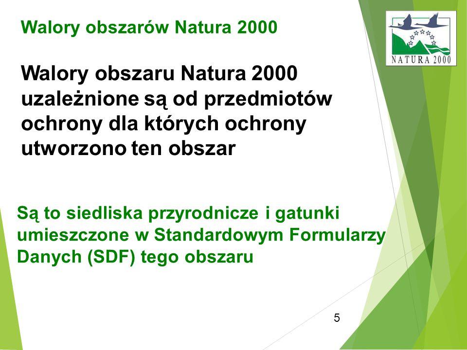 5 Walory obszarów Natura 2000 Walory obszaru Natura 2000 uzależnione są od przedmiotów ochrony dla których ochrony utworzono ten obszar Są to siedlisk