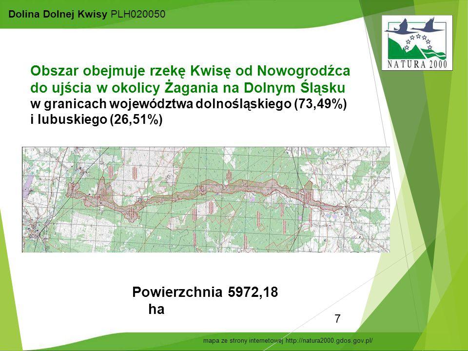 7 Dolina Dolnej Kwisy PLH020050 Powierzchnia 5972,18 ha Obszar obejmuje rzekę Kwisę od Nowogrodźca do ujścia w okolicy Żagania na Dolnym Śląsku w gran