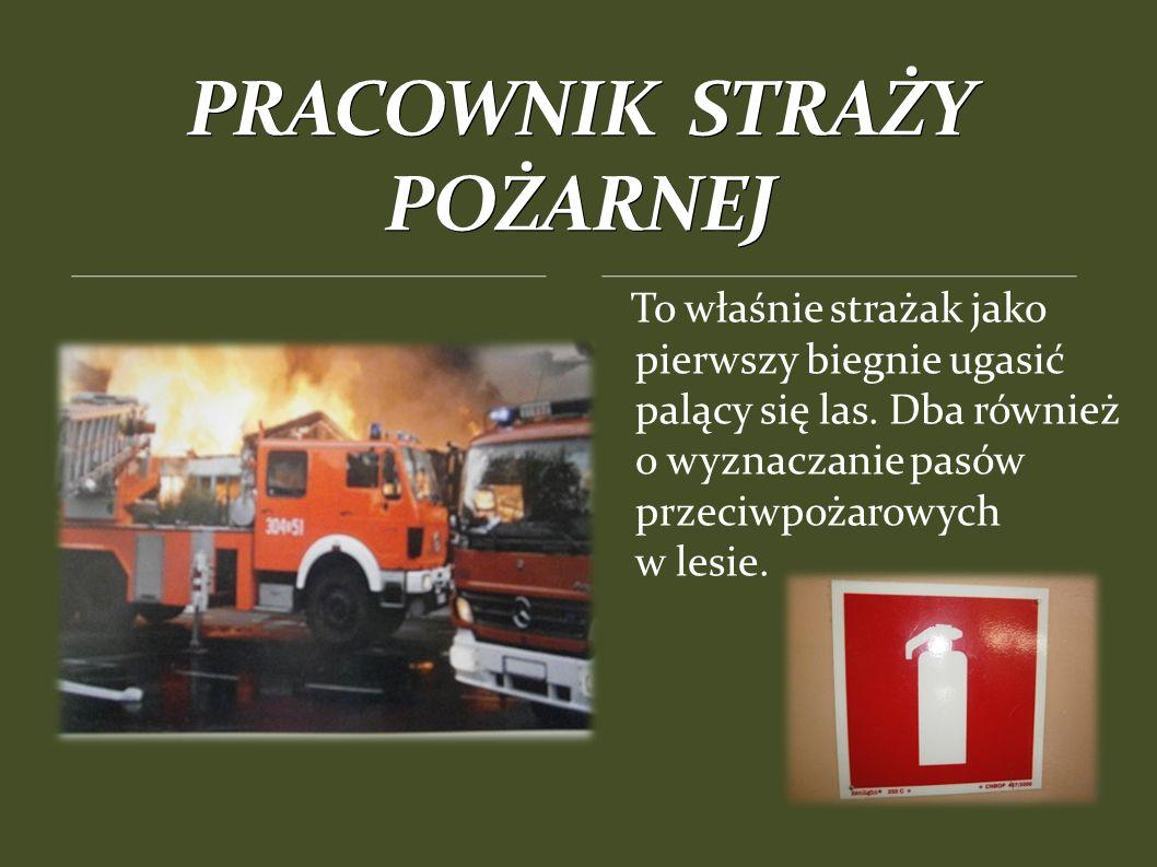 To właśnie strażak jako pierwszy biegnie ugasić palący się las.