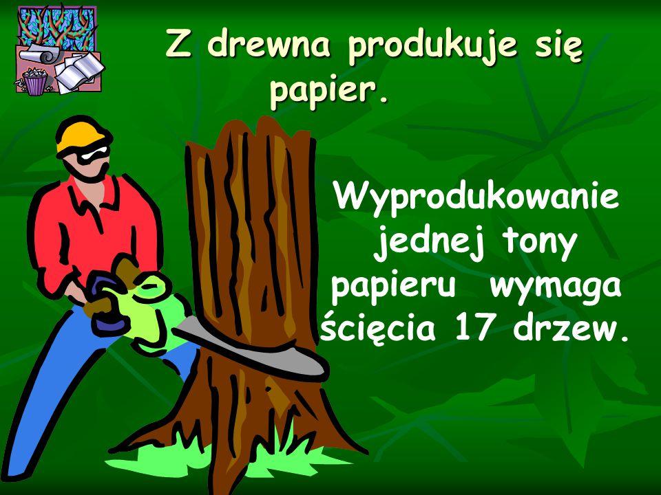 Wyprodukowanie jednej tony papieru wymaga ścięcia 17 drzew. Z drewna produkuje się papier. Z drewna produkuje się papier.