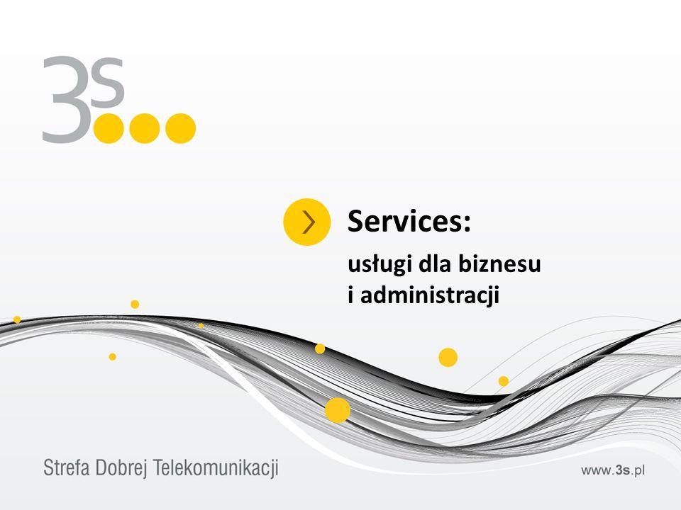 Services: usługi dla biznesu i administracji