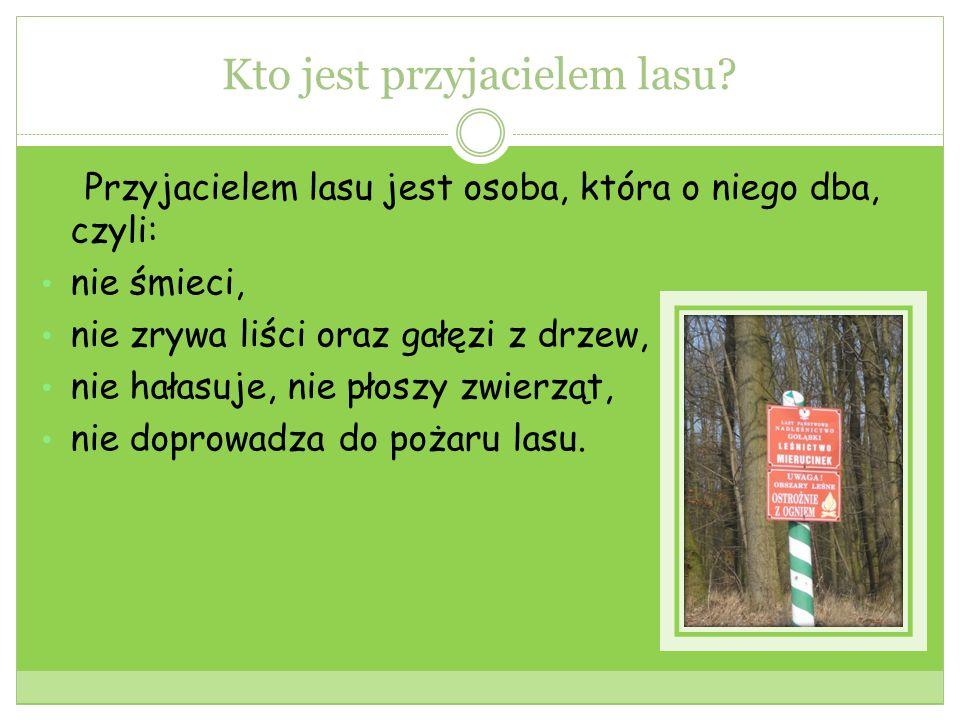Kto jest przyjacielem lasu.