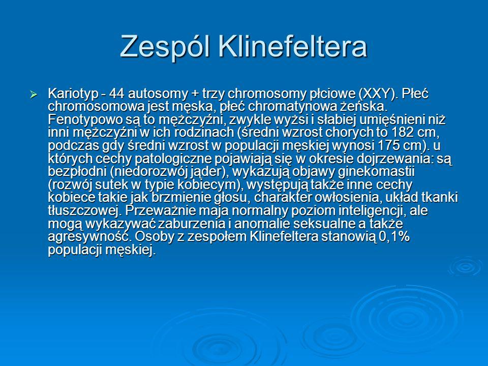 Zespól Klinefeltera  Kariotyp - 44 autosomy + trzy chromosomy płciowe (XXY). Płeć chromosomowa jest męska, płeć chromatynowa żeńska. Fenotypowo są to