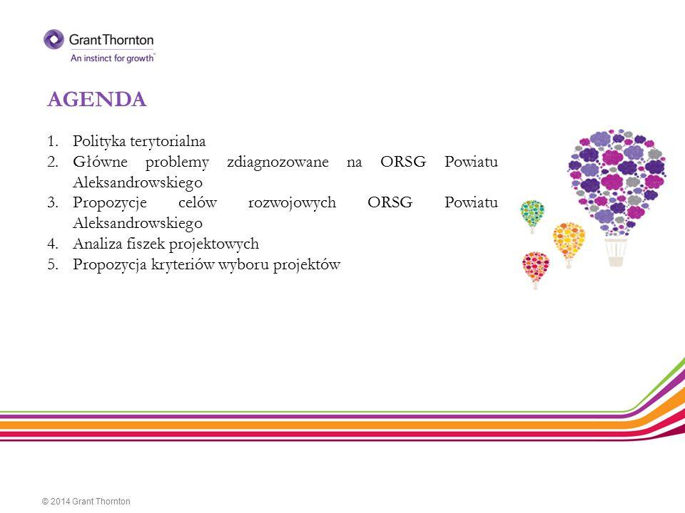 AGENDA © 2014 Grant Thornton 1.Polityka terytorialna 2.Główne problemy zdiagnozowane na ORSG Powiatu Aleksandrowskiego 3.Propozycje celów rozwojowych
