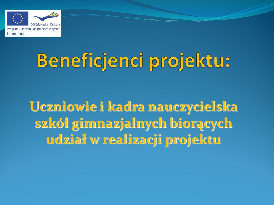 1.Języki wiodące projektu: język angielski i niemiecki 2.