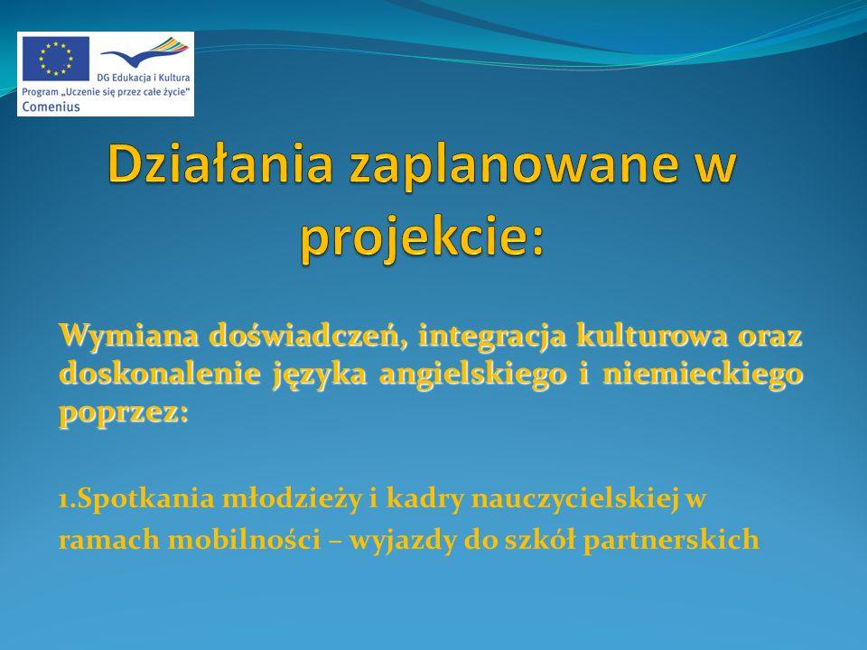 3.Zebranie przygotowanych słów i zwrotów i wydanie ich w formie słownika 4.