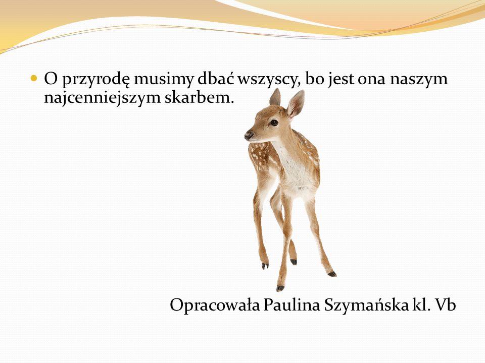 O przyrodę musimy dbać wszyscy, bo jest ona naszym najcenniejszym skarbem. Opracowała Paulina Szymańska kl. Vb