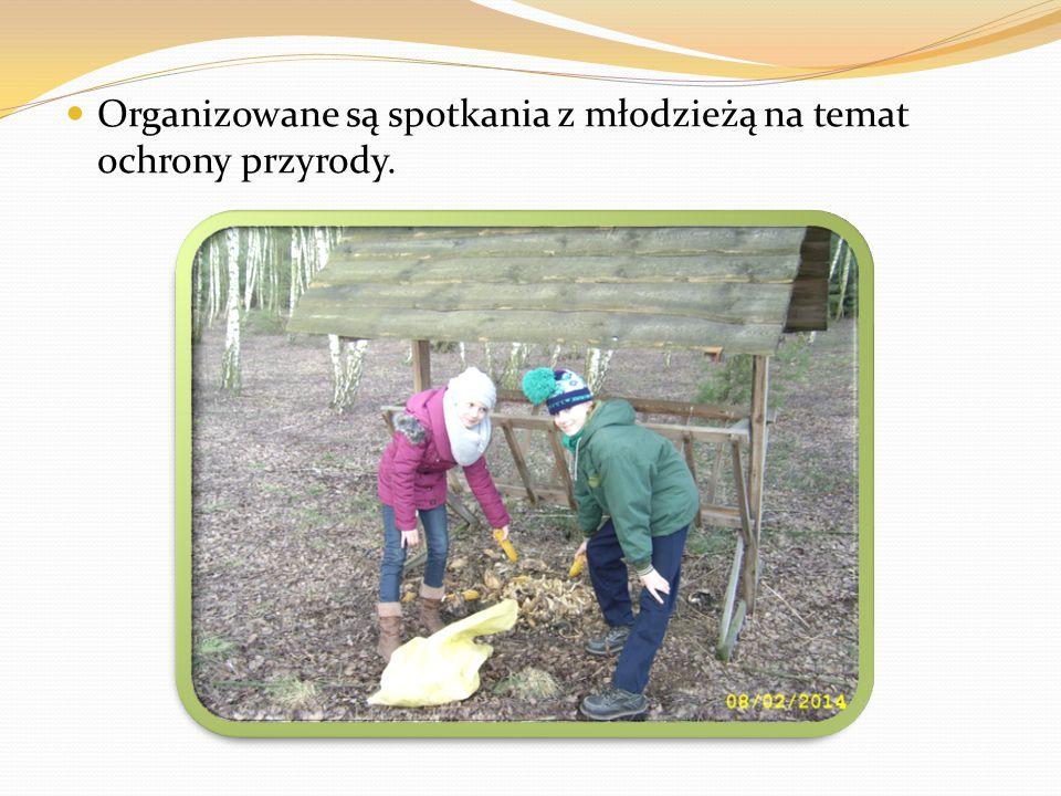 Organizowane są spotkania z młodzieżą na temat ochrony przyrody.
