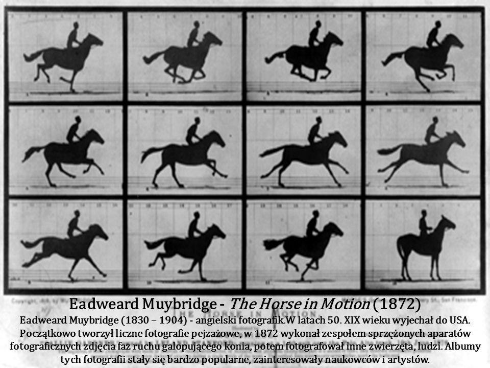 The Daily Graphic - Steinway Hall (1873) PIERWSZE DRUKOWANE ZDJĘCIE (New York's The Daily Graphic) UHONOROWANE NAGRODĄ PULITZERA