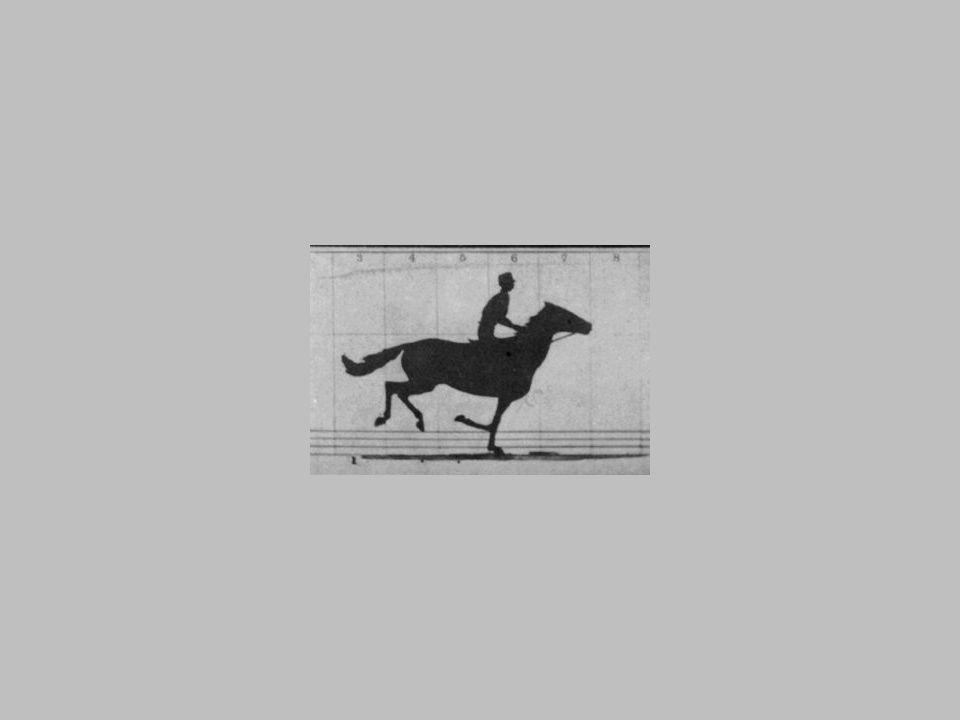 Eadweard Muybridge - The Horse in Motion (1872) Eadweard Muybridge (1830 – 1904) - angielski fotografik.W latach 50. XIX wieku wyjechał do USA. Począt