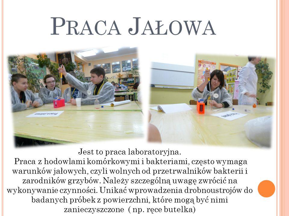 P RACA J AŁOWA Jest to praca laboratoryjna.