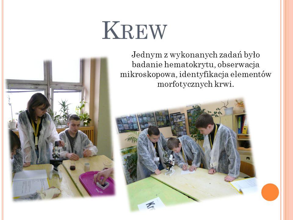K REW Jednym z wykonanych zadań było badanie hematokrytu, obserwacja mikroskopowa, identyfikacja elementów morfotycznych krwi.