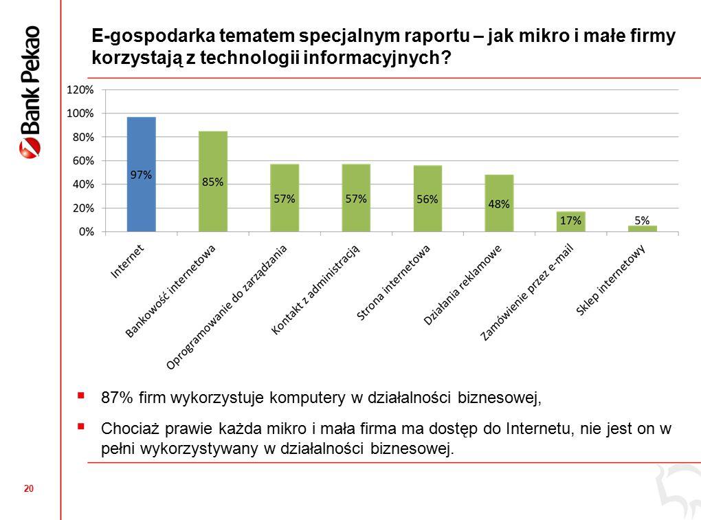 20 E-gospodarka tematem specjalnym raportu – jak mikro i małe firmy korzystają z technologii informacyjnych.