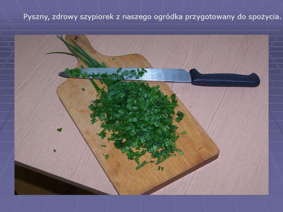 Pyszny, zdrowy szypiorek z naszego ogródka przygotowany do spożycia.