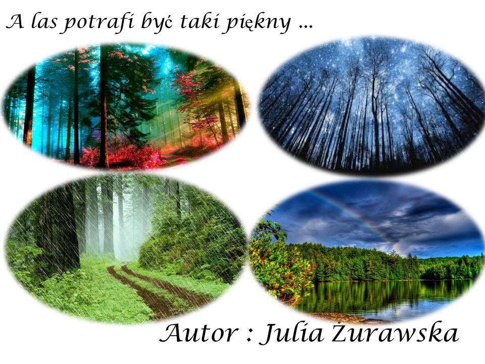 Autor : Julia Ż urawska A las potrafi by ć taki pi ę kny...
