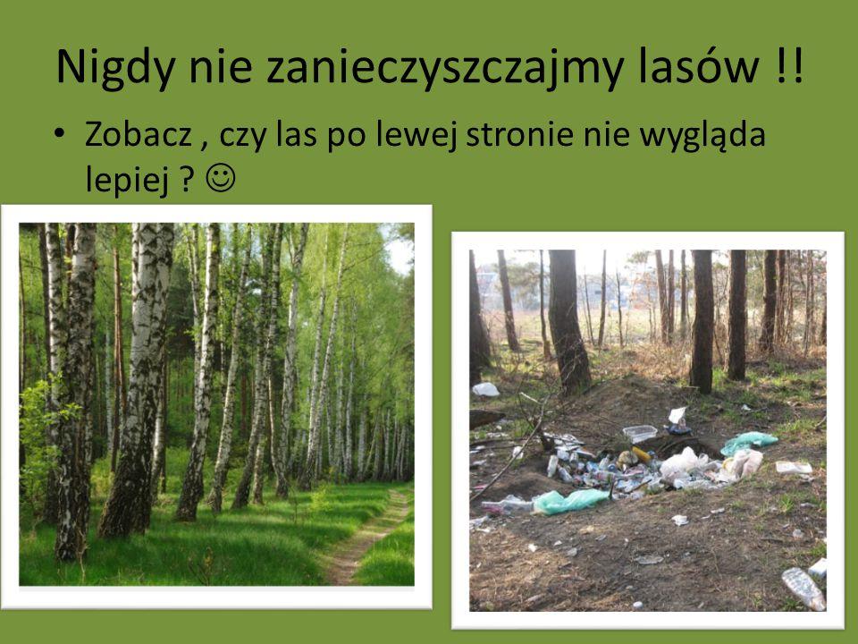 Nigdy nie zanieczyszczajmy lasów !! Zobacz, czy las po lewej stronie nie wygląda lepiej ?