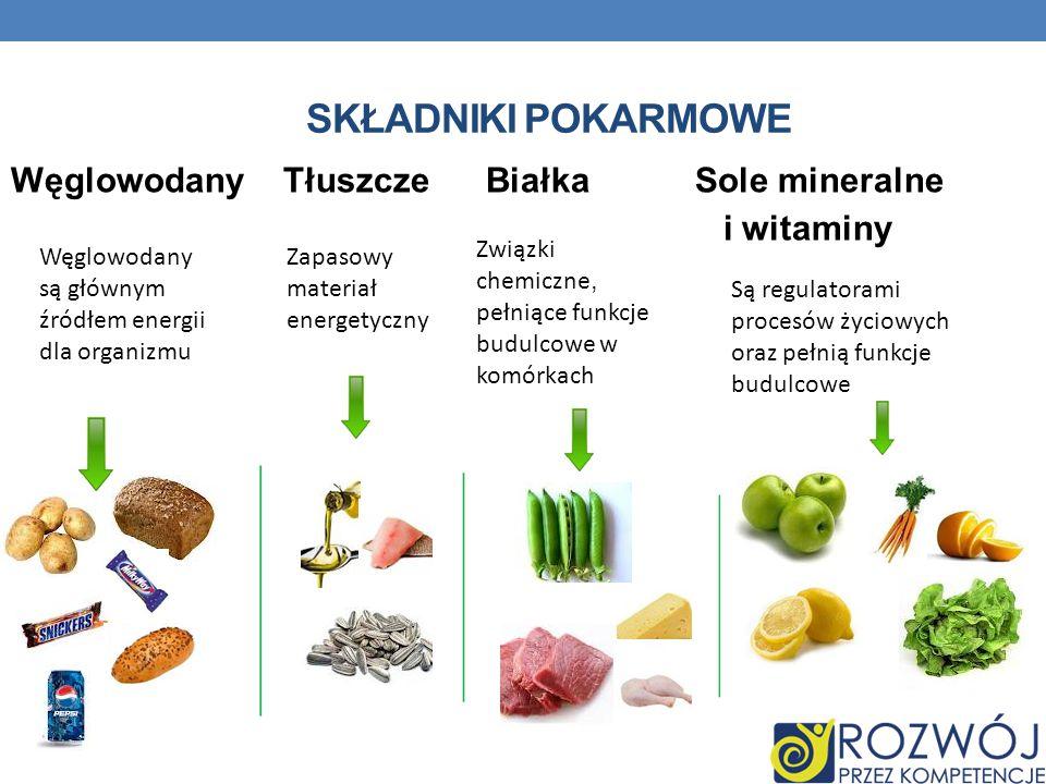 SKŁADNIKI POKARMOWE Węglowodany Tłuszcze Białka Sole mineralne i witaminy Węglowodany są głównym źródłem energii dla organizmu Zapasowy materiał energ