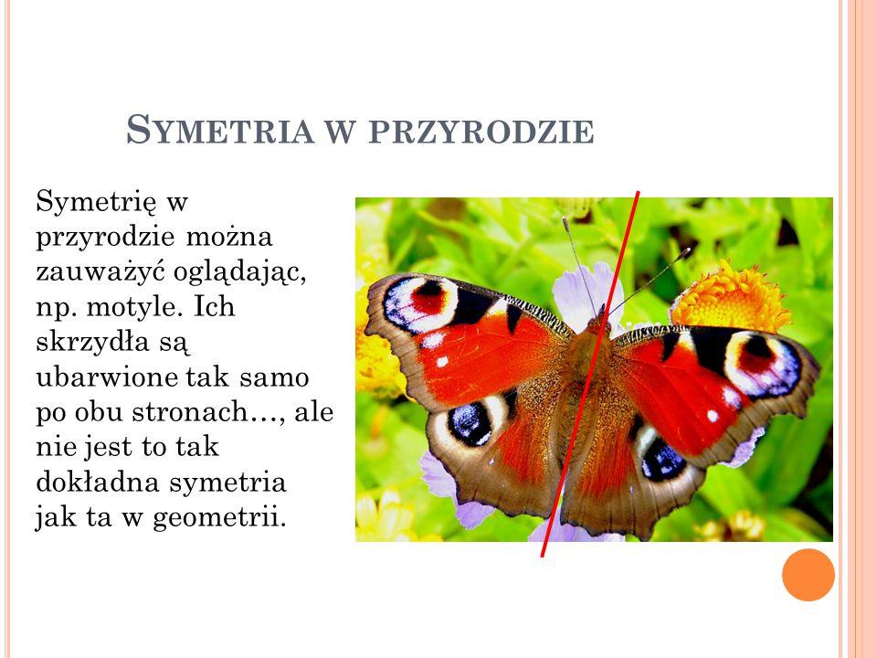 S YMETRIA W PRZYRODZIE Symetrię w przyrodzie można zauważyć oglądając, np. motyle. Ich skrzydła są ubarwione tak samo po obu stronach…, ale nie jest t