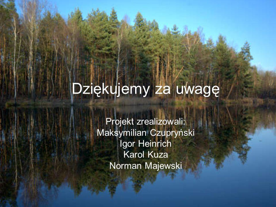Dziękujemy za uwagę Projekt zrealizowali: Maksymilian Czupryński Igor Heinrich Karol Kuza Norman Majewski