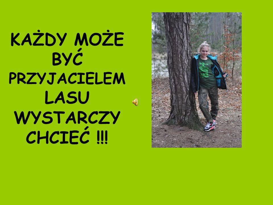 KAŻDY MOŻE BYĆ PRZYJACIELEM LASU WYSTARCZY CHCIEĆ !!!