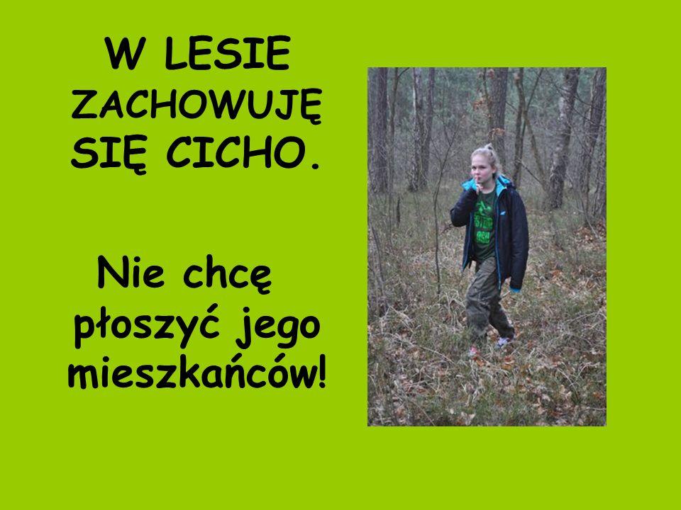 W LESIE ZACHOWUJĘ SIĘ CICHO. Nie chcę płoszyć jego mieszkańców!