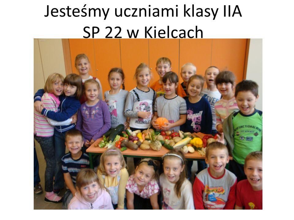 Jesteśmy uczniami klasy IIA SP 22 w Kielcach