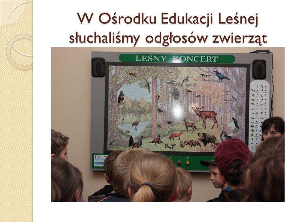 W Ośrodku Edukacji Leśnej słuchaliśmy odgłosów zwierząt