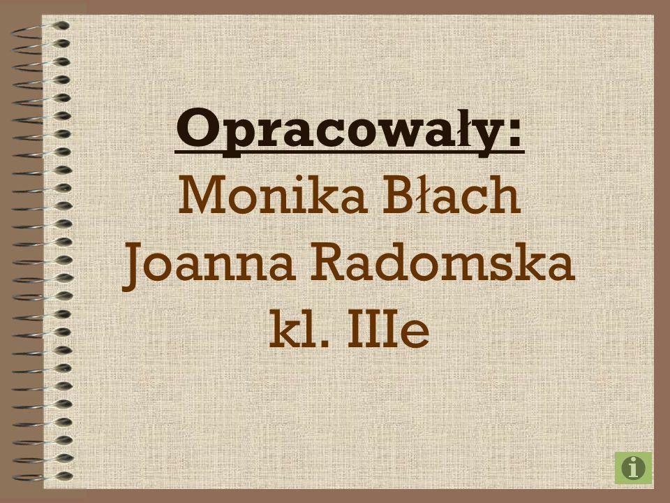 Opracowa ł y: Monika B ł ach Joanna Radomska kl. IIIe