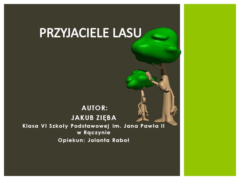 AUTOR: JAKUB ZIĘBA Klasa VI Szkoły Podstawowej im. Jana Pawła II w Rączynie Opiekun: Jolanta Raboł