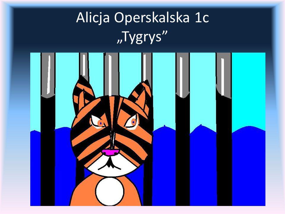 "Alicja Operskalska 1c ""Tygrys"