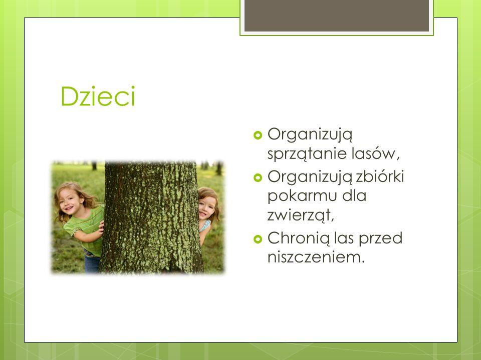 Dzieci  Organizują sprzątanie lasów,  Organizują zbiórki pokarmu dla zwierząt,  Chronią las przed niszczeniem.