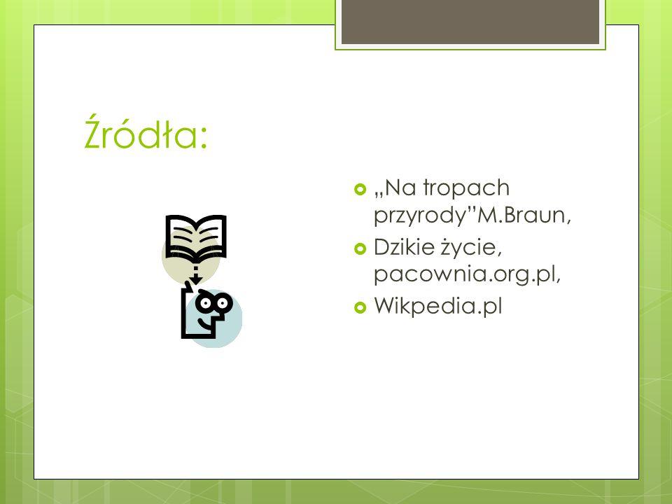 """Źródła:  """"Na tropach przyrody""""M.Braun,  Dzikie życie, pacownia.org.pl,  Wikpedia.pl"""