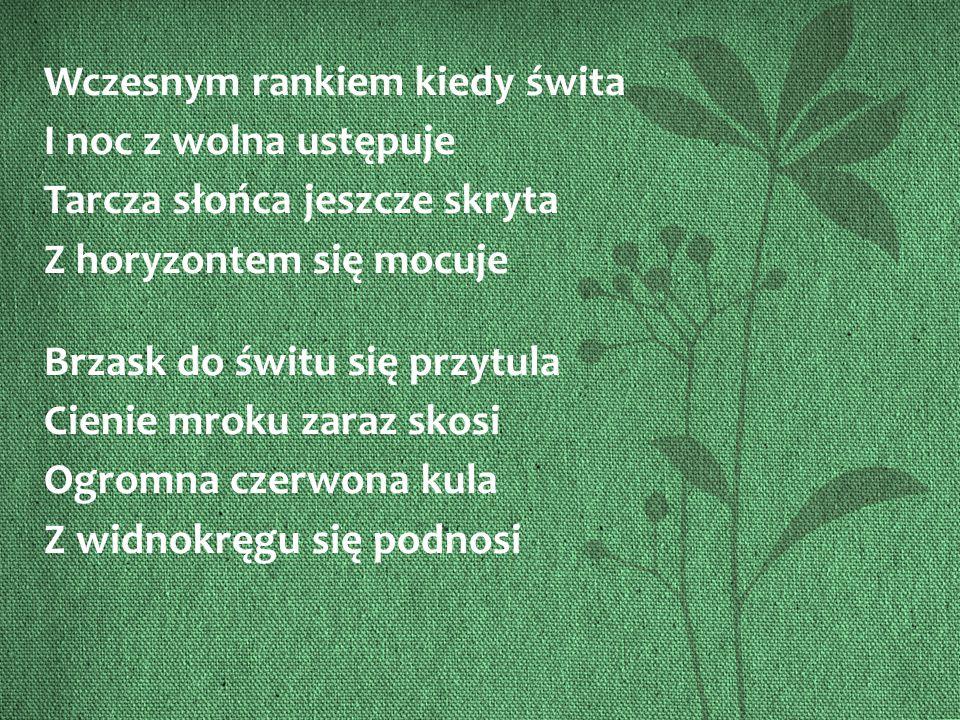 źródło zdjęcia : www.huskycruising.pl