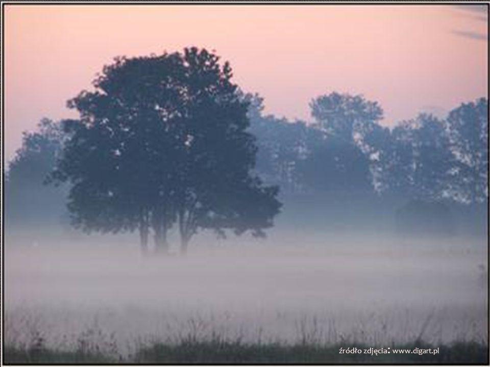 Mgiełka jak cukrowa wata Opadając trawę zrasza Rozbudzona brać skrzydlata Narodziny dnia ogłasza Mrok i szarość szybko znika Zewsząd słychać dźwięczne