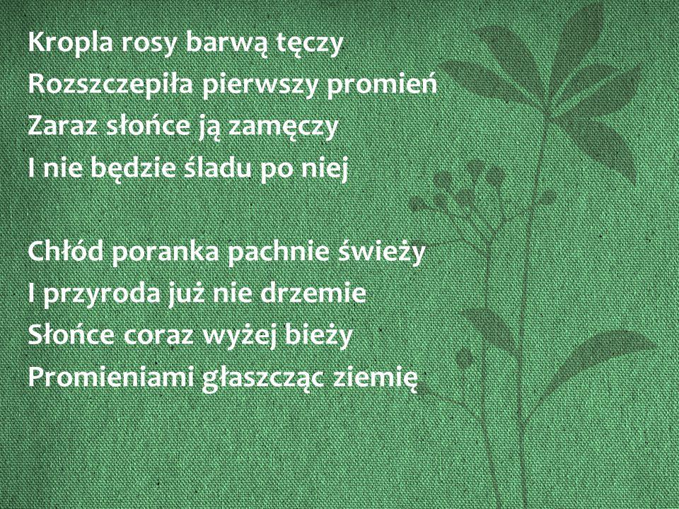 Źródło zdjęcia: hugon211.blog.interia.pl