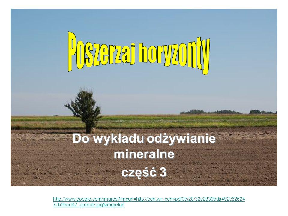 Zastanów się Zastanów się, jakie są przyczyny zasolenia gleby, szczególnie te związane z uprawą roślin.