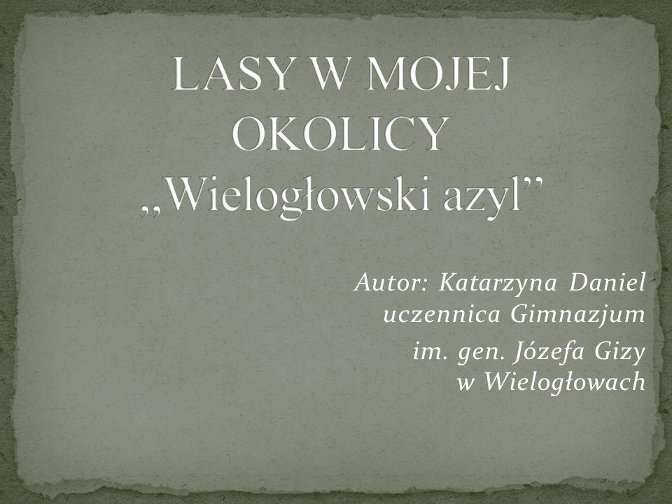 Autor: Katarzyna Daniel uczennica Gimnazjum im. gen. Józefa Gizy w Wielogłowach