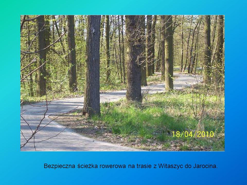 Bezpieczna ścieżka rowerowa na trasie z Witaszyc do Jarocina.