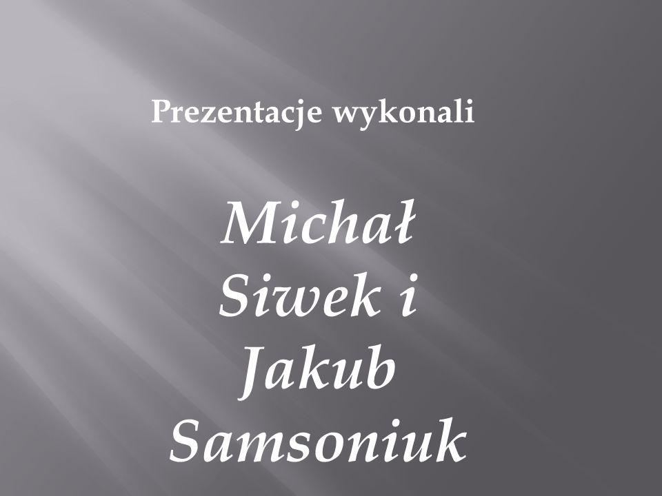 Prezentacje wykonali Michał Siwek i Jakub Samsoniuk