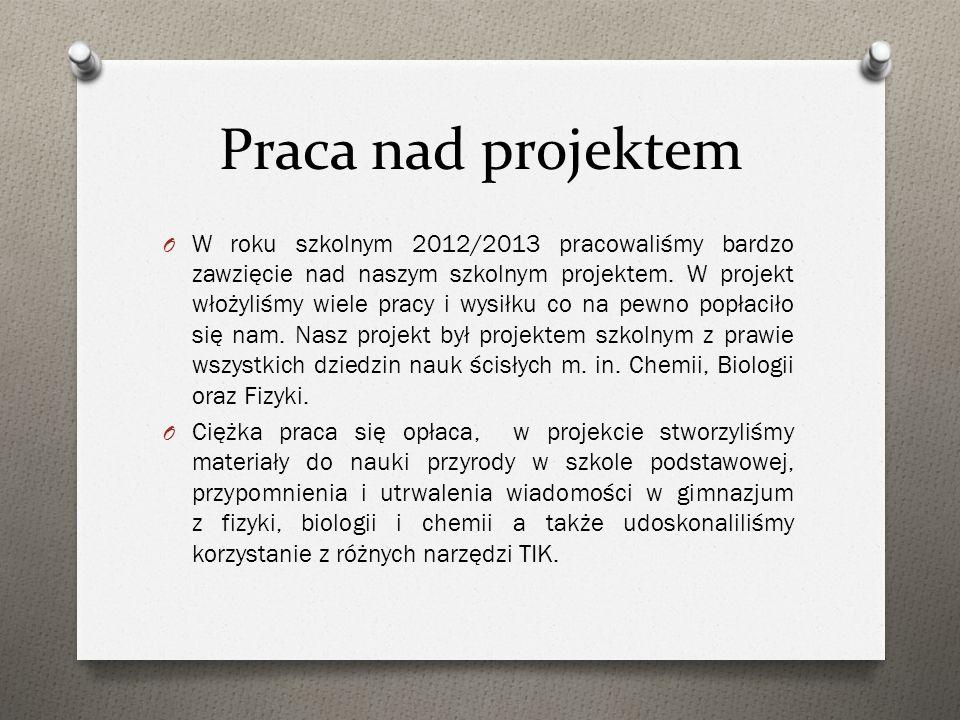 Praca nad projektem O W roku szkolnym 2012/2013 pracowaliśmy bardzo zawzięcie nad naszym szkolnym projektem. W projekt włożyliśmy wiele pracy i wysiłk